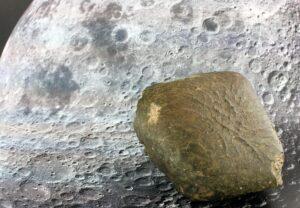 Oued Awlitis 001 Meteorit. Foto:  © NHM Wien, Ludovic Ferrière